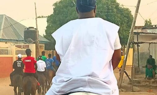 Insecurity: Niger bans horse riding during festivals