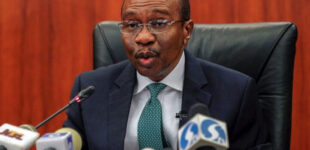 CBN launches new policy to financially support 100 companies every 100 days