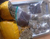 NDLEA arrests 10 'online drug traffickers' in Abuja