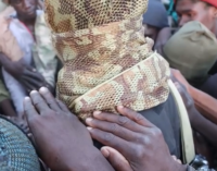 Boko Haram fighters reunite with ISWAP, pledge allegiance to new leader
