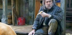 WATCH: Nicolas Cage hunts for kidnapped pet in 'Pig' trailer