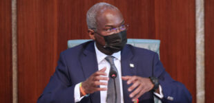 'Some haven't yielded results' — Fashola seeks audit of assets on concession deals