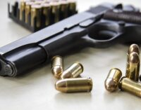 Reps consider bill to enable private production of firearms