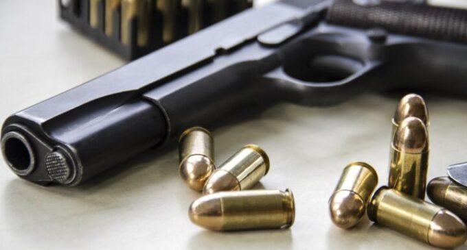 Lawyer sues Buhari over executive order prohibiting gun licensing