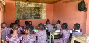 NGO calls for inclusion of climate education in school curriculum
