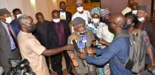 'Reconsider your position' — Ngige begs resident doctors to resume work