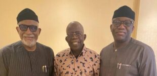 Fayemi: My visit to Tinubu in London not about 2023 election — he just had surgery
