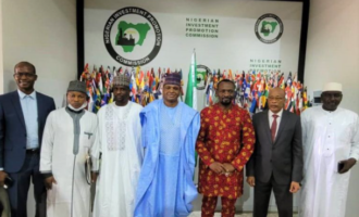 Nigeria, Chad to establish joint business council