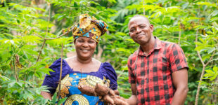 PIND celebrates 10 years of sustainable development in Niger Delta